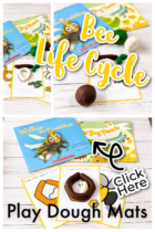Bee Life Cycle Play Dough Mats Preschool Activity