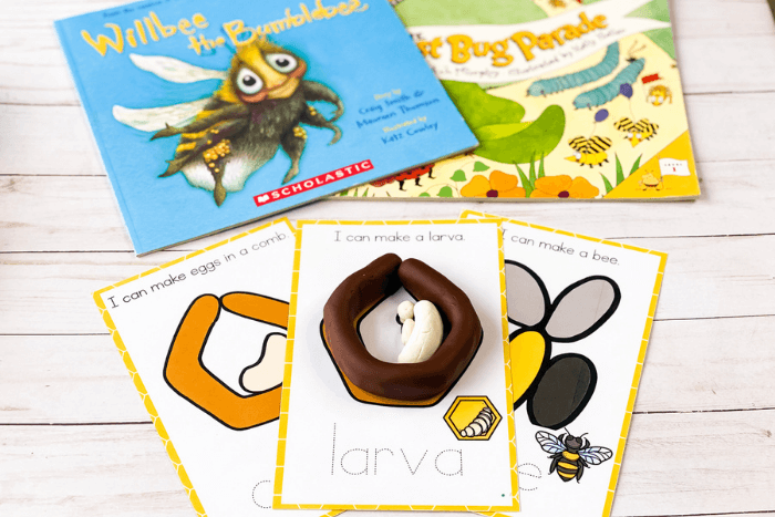 Life cycle of a bee play dough mat showing larva inside a honey comb. With books about bees: Willbee the Bumblebee and The Best Bug Parade