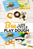 Bee Life Cycle Play Dough Activity