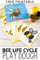 Free Printable Bee Life Cycle Play Dough Activity