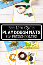 Bee Life Cycle Play Dough Mats for Preschoolers