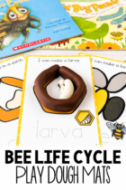 Bee Life Cycle Play Dough Mats