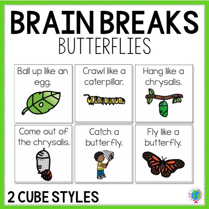 Brain Break Butterfly Cover