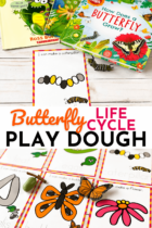 Free Life Cycle of a Butterfly Play Dough Mats