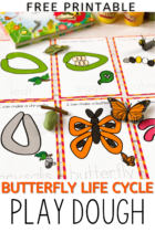 Free Printable Butterfly Life Cycle Play Dough Mats