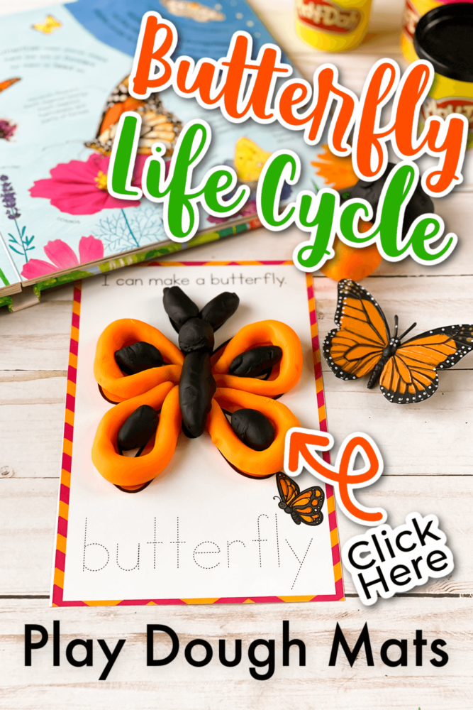 Butterfly Life Cycle Play Dough Mats
