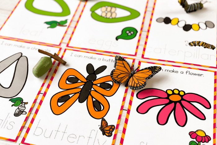 Overview of the Butterfly Life Cycle Play Dough Mats.