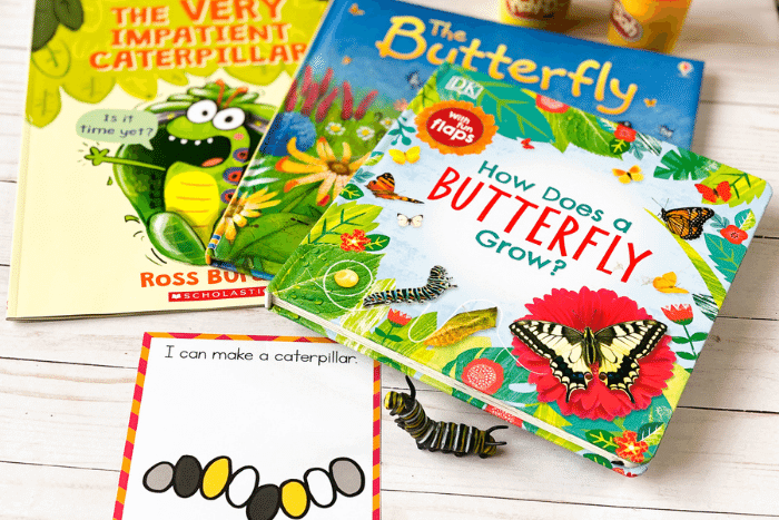 The butterfly life cycle play dough mat for a caterpillar.
