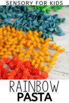 Rainbow Pasta Sensory for Kids