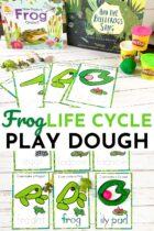 Free Printable Frog Life Cycle Play Dough Mats for preschool