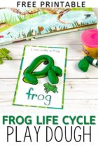 Frog play dough mat from Frog life cycle play dough mats set frog shape formed from play dough