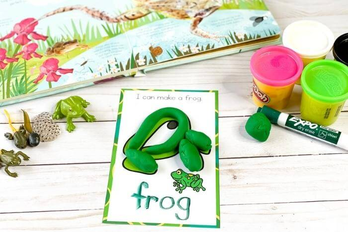 free printable frog life cycle mat showing an adult frog traceable word frog