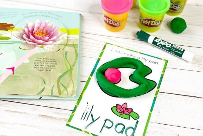 Frog Life Cycle play dough mat showing a lily pad with a pink flower
