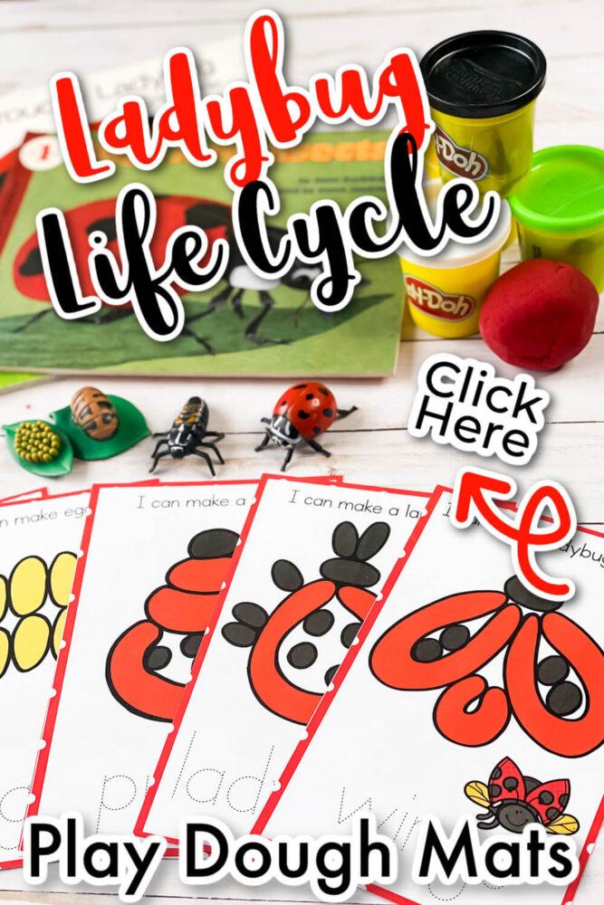Free Ladybug Life Cycle Play Dough Mats