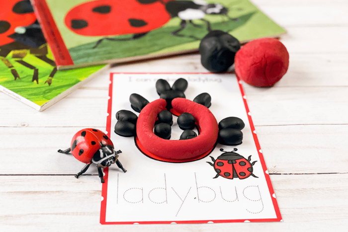 The ladybug life cycle play dough mat for the life stage