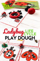 Ladybug Life Cycle Play Dough Activity