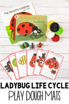 Ladybug Life Cycle Play Dough Mats