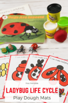 Free Printable Ladybug Life Cycle Play Dough Mats