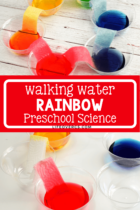 Walking Water Rainbow Preschool Science