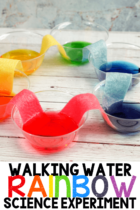 Walking Water Rainbow Science Experiment