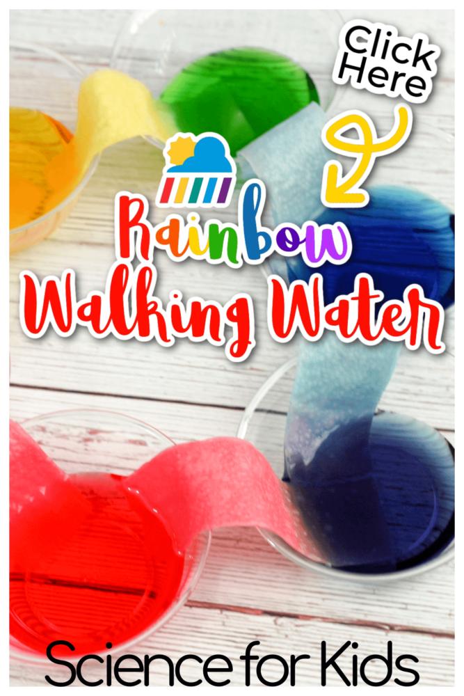 Rainbow Walking Water Science for Kids