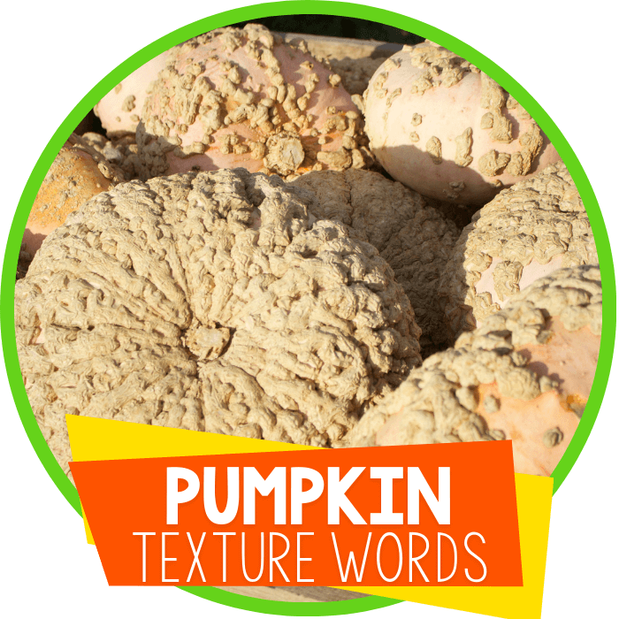Explore the Sense of Touch with Preschoolers Using Pumpkins