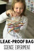 Easy Leak-Proof Bag Science Experiment