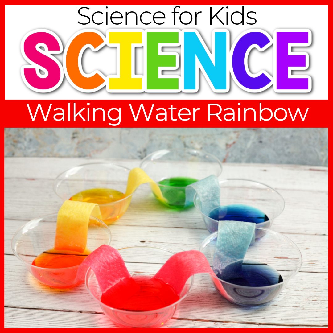 Walking Water Rainbow Science Experiment for Kids