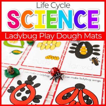 life cycle of a ladybug play dough mats