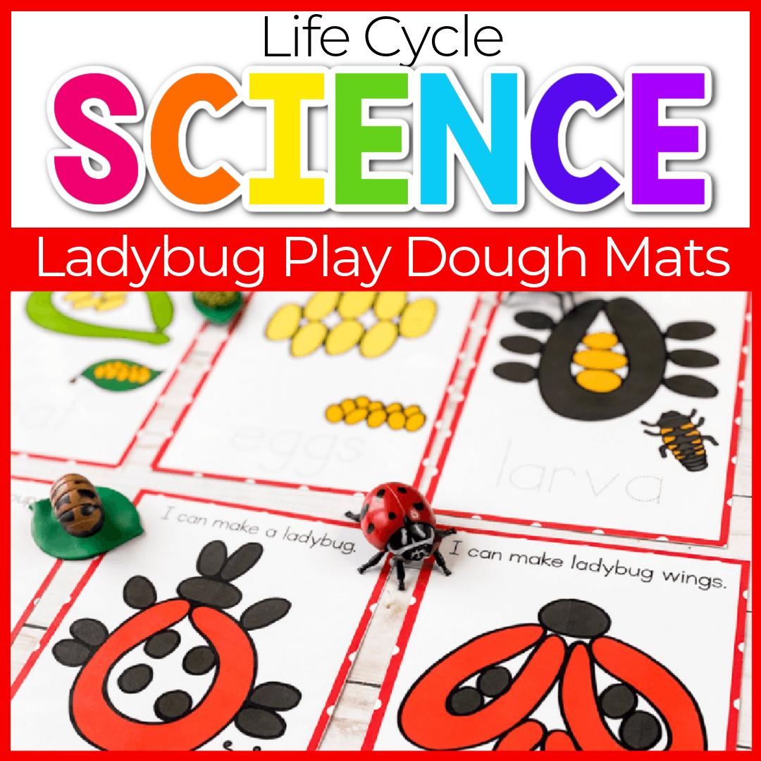 Free Printable Life Cycle of a Ladybug Play Dough Mats for Kids